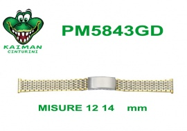 PM5843GD (12 14  mm)